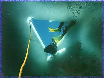 Click to view Ice Diving Pics